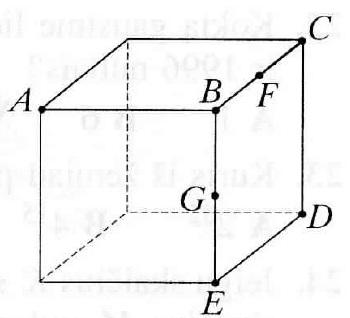 Kas yra briauna matematika